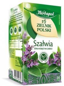 Herbata ziołowa w torebkach Herbapol, Zielnik Polski, szałwia, 20 sztuk x 1.2g