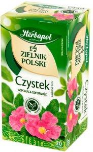 Herbata ziołowa w torebkach Herbapol Zielnik Polski, czystek,  20 sztuk x 2g