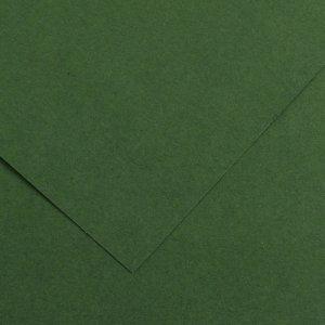Brystol Happy Color, A1, 170g/m2, ciemnozielony