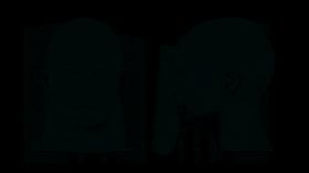 Przyłbica na twarz Biurfol, wielokrotnego użytku, 2 sztuki (c)