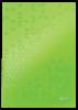 ZS517