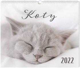 Kalendarz ścienny Interdruk 2022, planszowy, 335x400mm, Koty